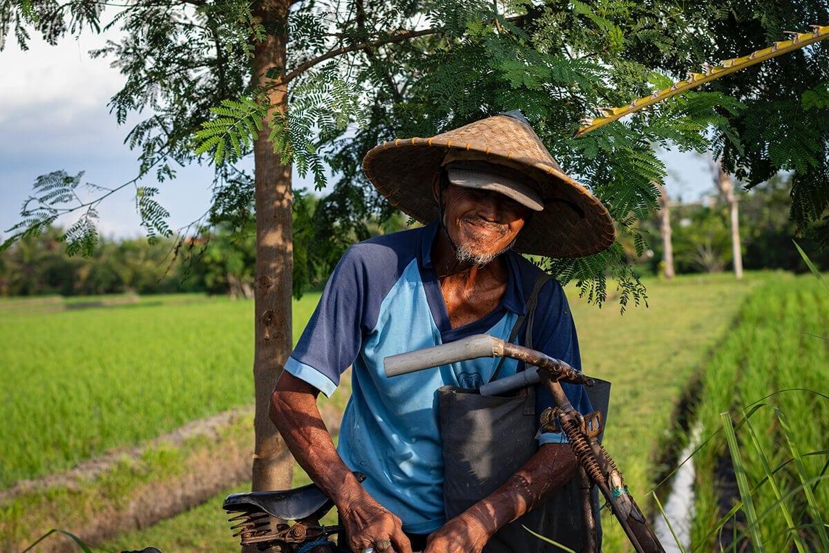 veja o que fazer para comprovar tempo rural para aposentadoria